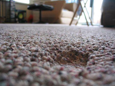 carpet_divot1.jpg