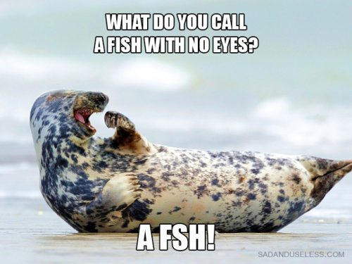 What do u call a fish with no eyes
